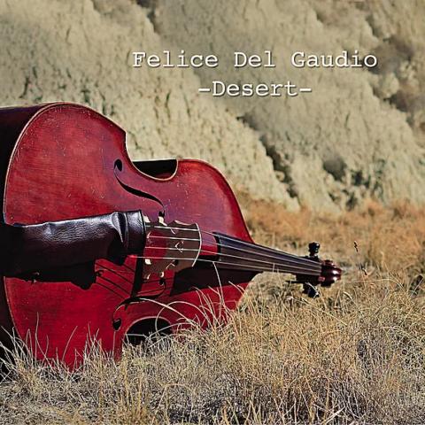 cover-desert